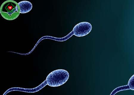 Tác nhân nào gây ra tinh trùng ít
